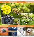 Fotograferen met de Canon EOS 60D, 70D, 750D en 760D