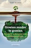 Groeien zonder te groeien (e-book)